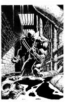 WOLVERINE by DAVID FINCH by knockmesilly