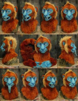 Danerz monkey by Crystumes