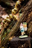Fungal Gnome by thedustyphoenix