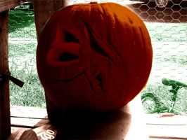 Timaeus' head on a pumpkin by KenshinKyo
