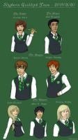 Slytherin Quidditch Team by AlbinoNial
