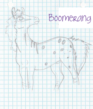 Boomerang Try-Out by Dancing-Kiwi