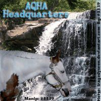 HEE AQHA Headquarters - Avatar ~2017~ by GabriellasFantasy