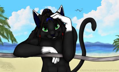 Cat on the beach by Cristaleyes