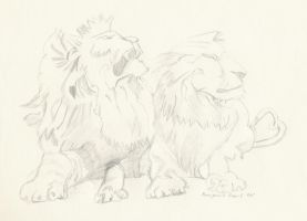 Lions by Benji7