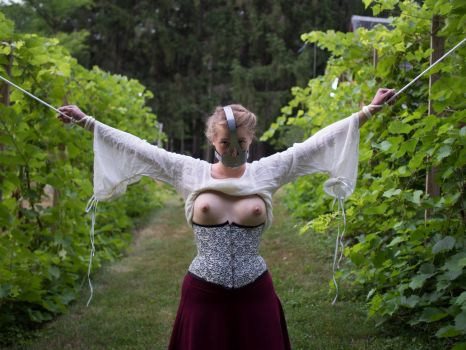 Tied and Gagged in the Vineyard 2 by kinkykusco