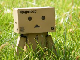 danbo in grass by filsru