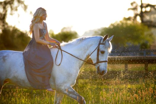 Fairytale by Equus-Photography