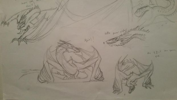 smaug sketches by spinosaurus1