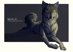 Vexing by ArchaicWolves