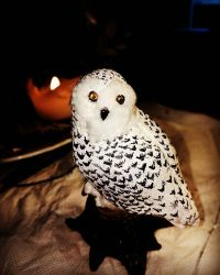 Snowy owl sculpt by RetroCharo