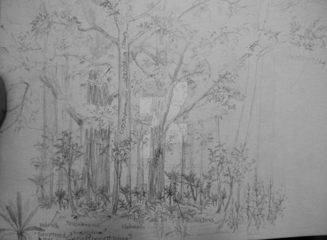 Triassic forest components by Lucas-Attwell