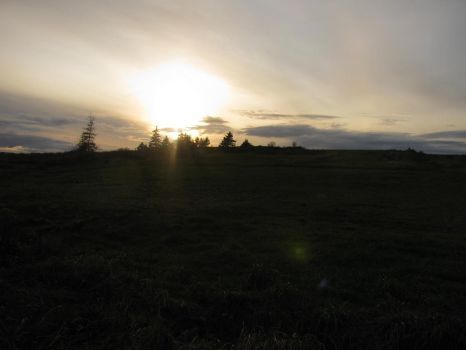 Grassy Field and a Setting Sun by ArwenEvenstar100