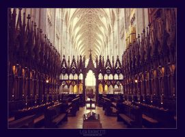 Winchester cathedral- interior by dethita