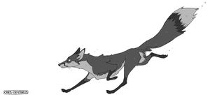 the quick grey fox by Canis-Infernalis
