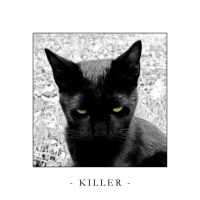 KILLER by shadowiness