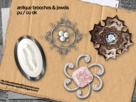 Brooches + Jewels by slavetofashion69