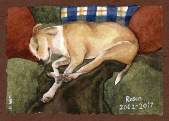 11/2017 Rosco Memorial Watercolor by matildarose