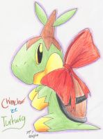 ArtTrade:Chimchar the Turtwig