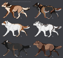 [CLOSED] SALE 50% Semi natural canine adopts by Eredhys
