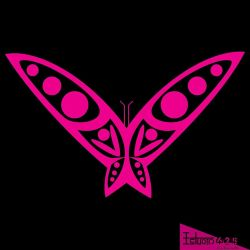 Magenta butterfly by LuisxOlavarria