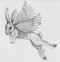Day 14: A Monster that Flies by bunnykissd