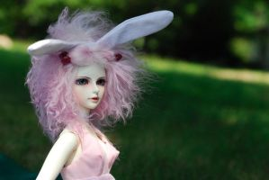 Pasha the BJD by NibbleKat
