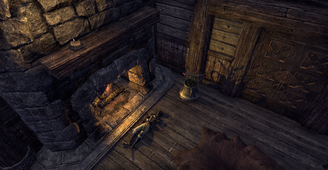 Never again will I have this 'Nord' Mead by Night-Of-Wind