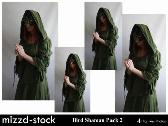 Bird Shaman Pack 2 by mizzd-stock