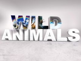 Wild animals by NaZiiTo