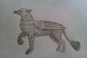 Griffin by TM002