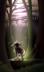 Get Lost :Commission: by Shiikoba