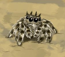 Spider Doodle by beverly546