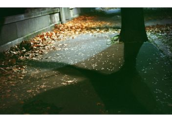 autumnal impressions by ionWill