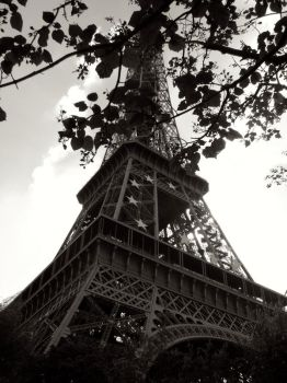 Eiffel Tower Print by Natomicron