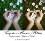 Forgotten Flowers Action by sd-stock