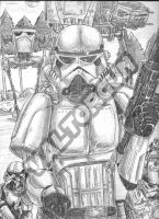 FANART-STARWARS the Galactic Empire