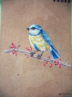 Eurasian blue tit - traditional drawing by KhaliaArt
