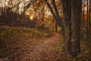 Into the light by JustinDeRosa