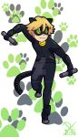 Chat Noir | Crystal water