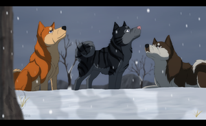 Ginga - First Winter by SabraeTrash