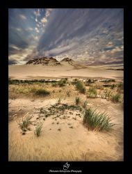 ...Dune... by canismaioris