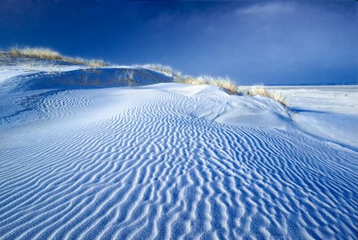 Frost on the dunes II, Baltrum Island, Germany by zeitspuren