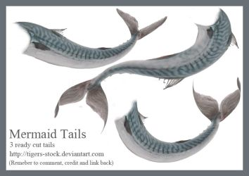 484 mermaid tails by Tigers-stock