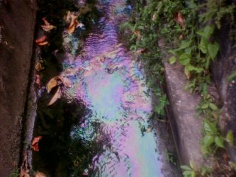 Rainbow Drain. by AmbientDays