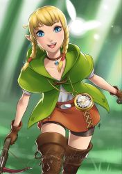 Hyrule Warriors - Linkle redux by polarityplus