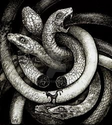 Snakes by Orm-Z-Gor