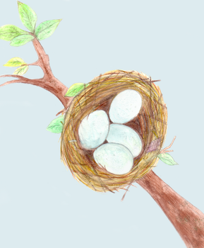 Spring Nest (2015) by astateofconfusion