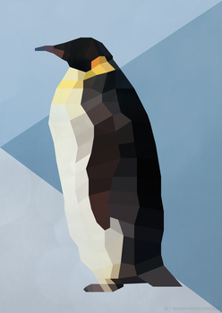 Low Poly 2D Penguin by Shadowphoenix21