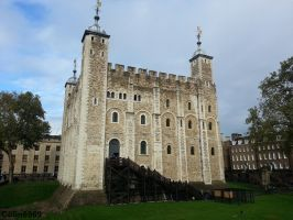 Tower of London by colin6969